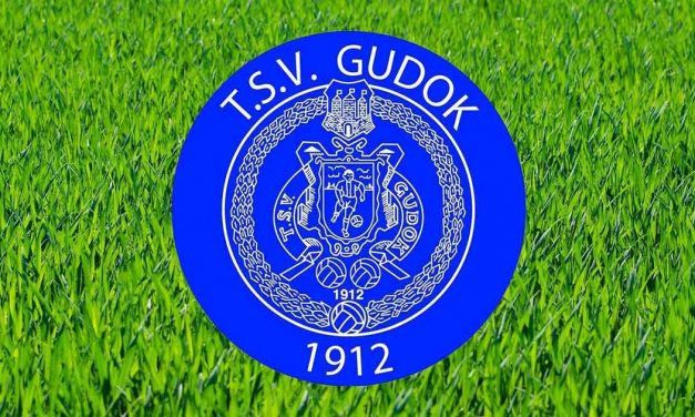 Veel wijzigingen TSV Gudok